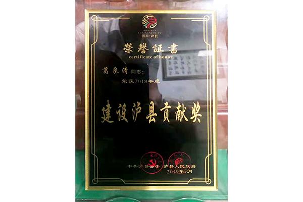 建设泸县贡献奖